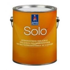 Solo 100% Acrylic Latex Paint Flat